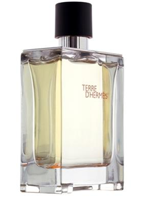 Hermes Terre D`Hermes Men Edt 50 ml Parfüm